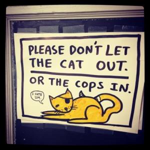 catcops