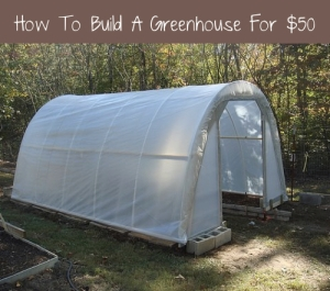 How-To-Build-Your-Own-Greenhouse-For-50